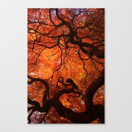 Eloquence - Autumn Maple Leaves Canvas Print
