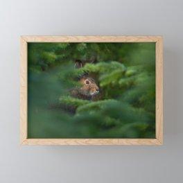 Jackrabbit Framed Mini Art Print