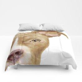 Pitbull light brown Dog illustration original painting print Comforters