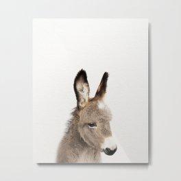 Baby Donkey, Baby Animals Art Print By Synplus Metal Print