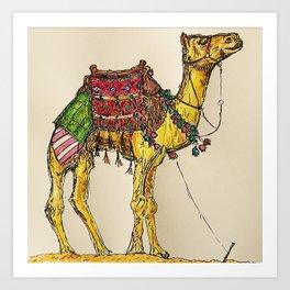 Camel in Morocco Art Print