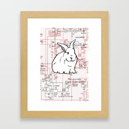 Rabbit, Rabbit, Rabbit Framed Art Print