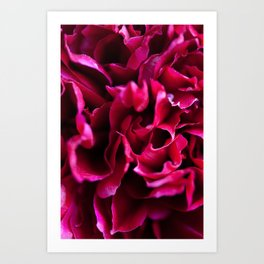 Deep Red Peony Print - Colorful Floral Macro Photography - Summer Flower Abstract Close-up Wall Art Art Print