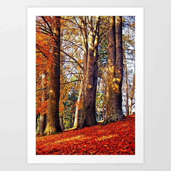 Autumn troika Art Print