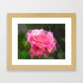 Pink Roses in Anzures 4 Art Triangles 1 Framed Art Print