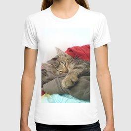 Cutest Cat T-shirt