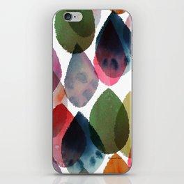 Rainbow Showers iPhone Skin