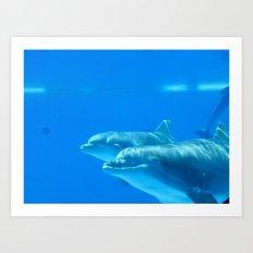 Smiling Dolphin Art Print
