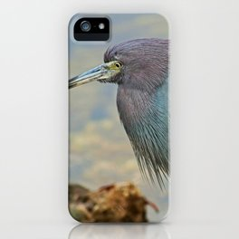 Matriarch of a Dynasty iPhone Case