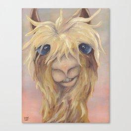 llama 5 Canvas Print