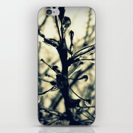 Glistening iPhone Skin