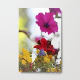 Colors of Nature Metal Print