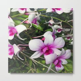 Pink On the Inside Metal Print