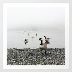 Canadian Geese + Fog Art Print