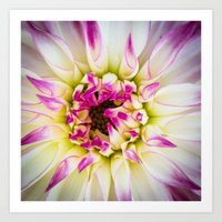 Solace within Art Print