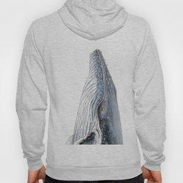Humpback whale portrait Hoody