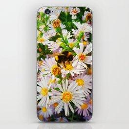 Bumblebee iPhone Skin