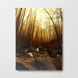 Misty Morning In The Forest Metal Print