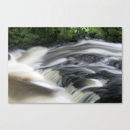 Ludlow Falls Canvas Print