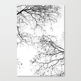 BLACK BRANCHES 2 Canvas Print