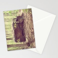 Old Abandoned Truck Stationery Cards