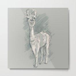 Lawrence T. Llama Metal Print