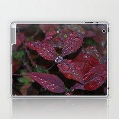 water orb Laptop & iPad Skin