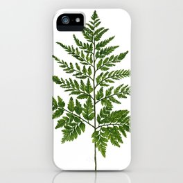 Fern 2 Painting iPhone Case