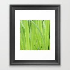 Mystic Green Framed Art Print