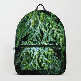 Pacific Redcedar Backpack