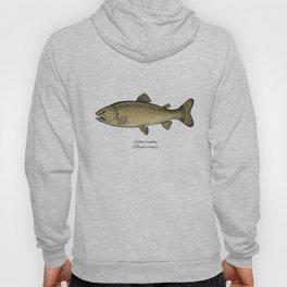 Brown trout Hoody