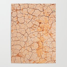 Cracked dry land pattern Poster
