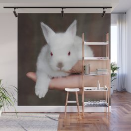 Bunny in hand Wall Mural
