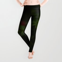 Beautiful Pink Roses With Green Leaves Floating On A Black Background Leggings