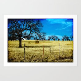 Along The Way In Clyde, Texas Art Print
