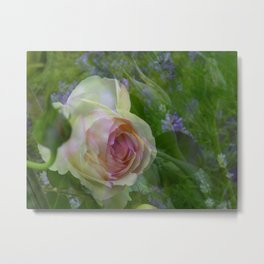 little rose Metal Print