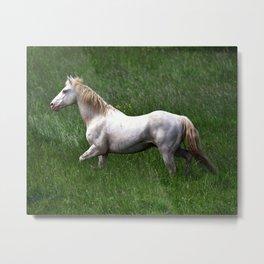 BEAUTIFUL WHITE HORSE Metal Print