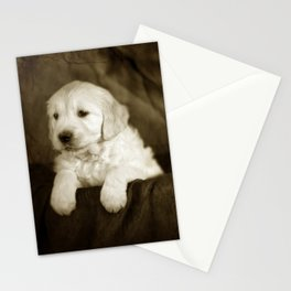 Labrador puppies Stationery Cards