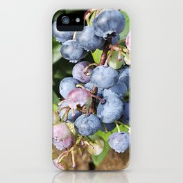 Ready to pick blueberries? iPhone Case