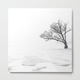 Lonely Tree on Frozen Lake Metal Print