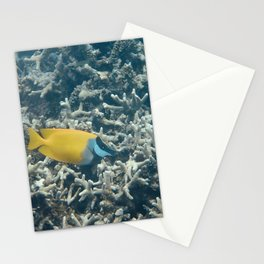 Yellow Fish Micronesia Stationery Cards