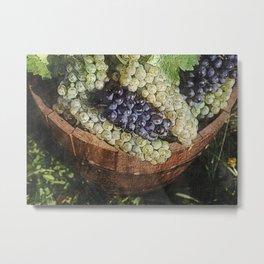 Grapes In Cask Metal Print
