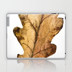 Autumn Leaf 01 Laptop & iPad Skin