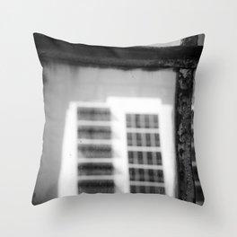 glass houses Throw Pillow
