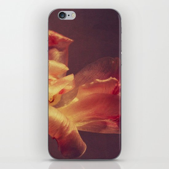 luce iPhone Skin