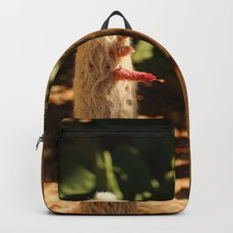 A Funny Sight Cacti Backpack