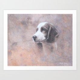 Brittany Spaniel Puppy Art Print