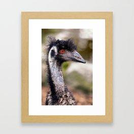 Portrait of an Emu Framed Art Print