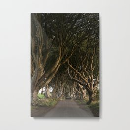 Row of Trees (Dark Hedges in Northern Ireland) Metal Print