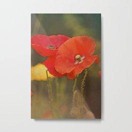 Poppies vintage (6) Metal Print